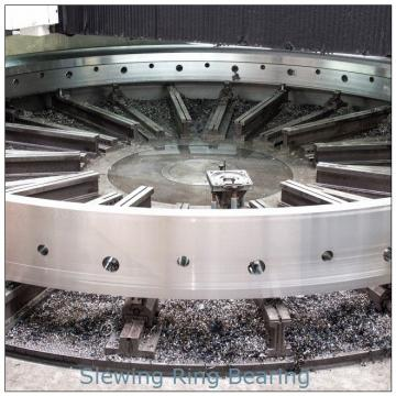 High precision SE  slewing drive with hydraulic motor application